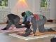 yoga maintal 45